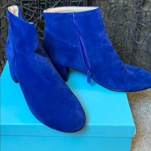 Shoes - Blue suede ankle boots